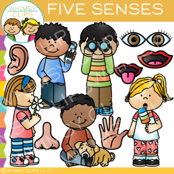Five Senses Clip Art