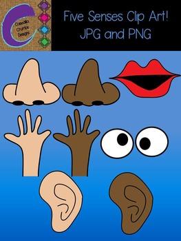 Five Senses Clip Art Color Images
