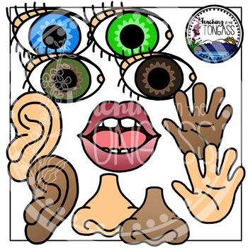 Five Senses Clipart
