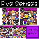 Five Senses Clipart Bundle {Creative Clips Clipart}