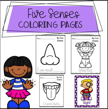 Five Senses Coloring Pages And Posters By Peaks And Pencils TpT