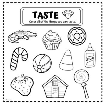 Five Senses Book & Coloring Pages (Differentiated) By The Confetti