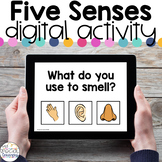 Five Senses - Digital Activity - Distance Learning for Spe