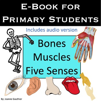 Five Senses E-Book How do your Five Senses Work?