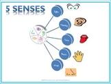 Five Senses, ESL Interactive notebook, Teach English