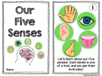 Five Senses Experiments, Writing, & Practice