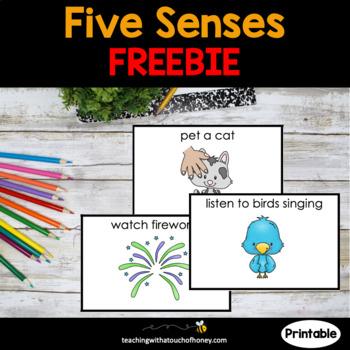 Health | Five Senses| 5 Senses Activity | FREEBIE