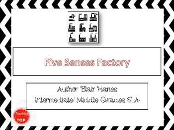 Five Senses Factory