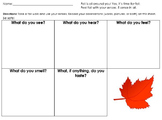 Five Senses Fall Worksheet