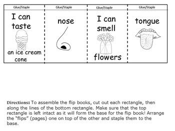 Five Senses Flip Flap Book & Writing Prompts