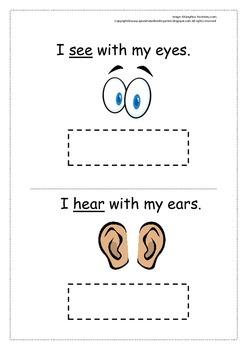 Five Senses Freebie