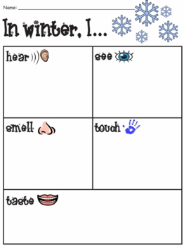 Five Senses Graphic Organizer Seasons - Elementary K-3