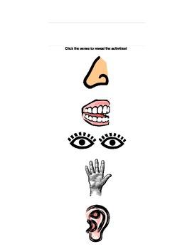 Five Senses Hyperbook