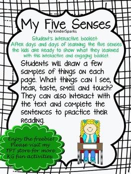 Five Senses Interactive Booklet