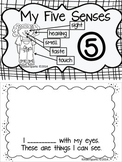 Five Senses Interactive Booklet