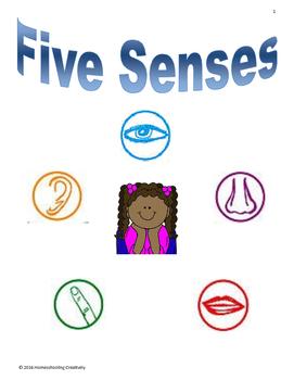 Five Senses Lapbook