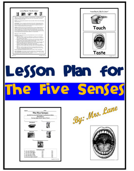 Lesson Plan for The Five Senses (and Activity!)
