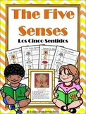 Five Senses- Los Cinco Sentidos