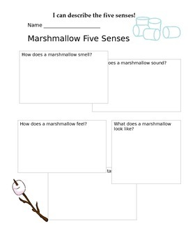 Five Senses Marshmallow Explore Worksheet