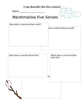 five senses marshmallow explore worksheet by lauren sims tpt. Black Bedroom Furniture Sets. Home Design Ideas