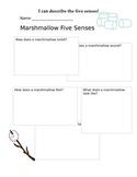 Five Senses Marshmallow Explore Worksheet