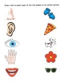 Five Senses Match