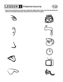 5 Senses Matching Worksheet | Teachers Pay Teachers