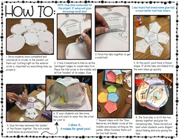 Five Senses, Memories, and The Brain Project - NGSS Aligned MS-LS-1-8