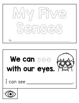 Five Senses Mini Book