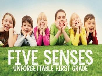 Five Senses {Mini Unit & Craftivity}