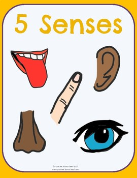 Five Senses No-Prep Thematic Unit Plan