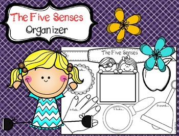Five Senses Organizer