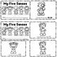 Five Senses Pack