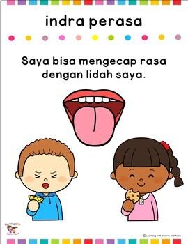 Five Senses (Panca Indra) in Bahasa Indonesia/Indonesian