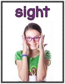 Five Senses Posters