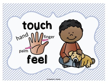 Five Senses Posters Freebie *2 sets* with or without body part labels for ELLs!