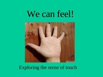 Five Senses PowerPoint:  Sense of Touch