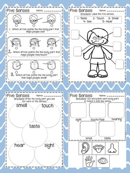 Five Senses: Practice and Assessments