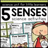 FIVE SENSES SCIENCE MATERIALS
