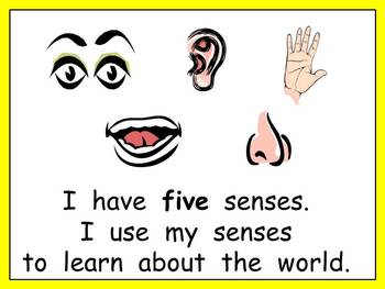 Five Senses Shared Reading- Kindergarten- Science