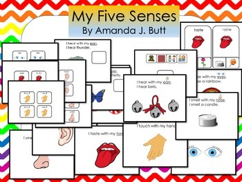 Five Senses:  Smell, Touch, Taste, Hear, See, Autism; Special Education