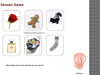 Five Senses: Smelling (Power Point & Task Book)