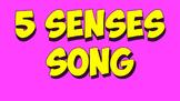 Five Senses Song