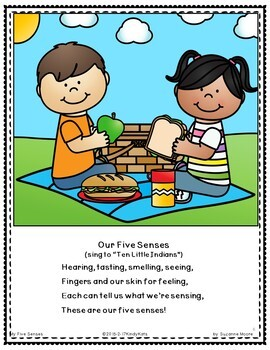 Five Senses: Songs & Rhymes