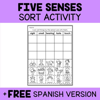 Interactive Sorting - Five Senses Activity