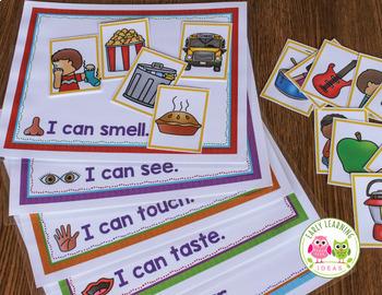 Five Senses Sorting Activity for Preschool and Pre-K