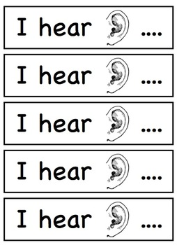 Five Senses Student Display