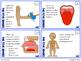 Five Senses and Sensory Processing Task Cards