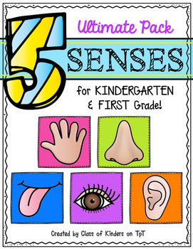 Five Senses Ultimate Pack for Kindergarten & First Grade Science