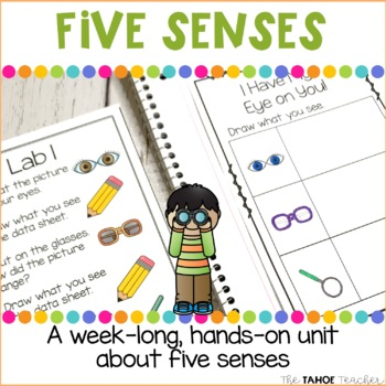 Five Senses Unit | Science Centers for Primary Grades
